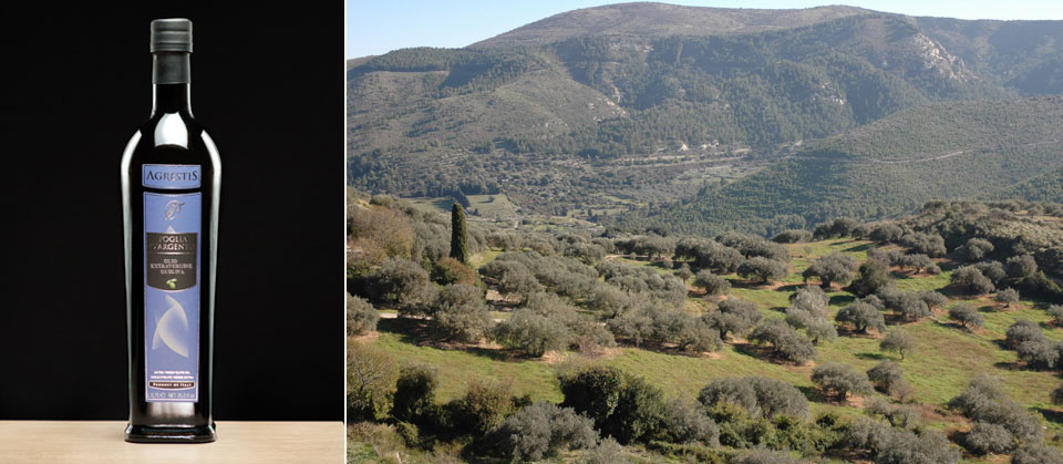 AGRESTIS | Azienda di Buccheri produttrice di olio extravergine di oliva